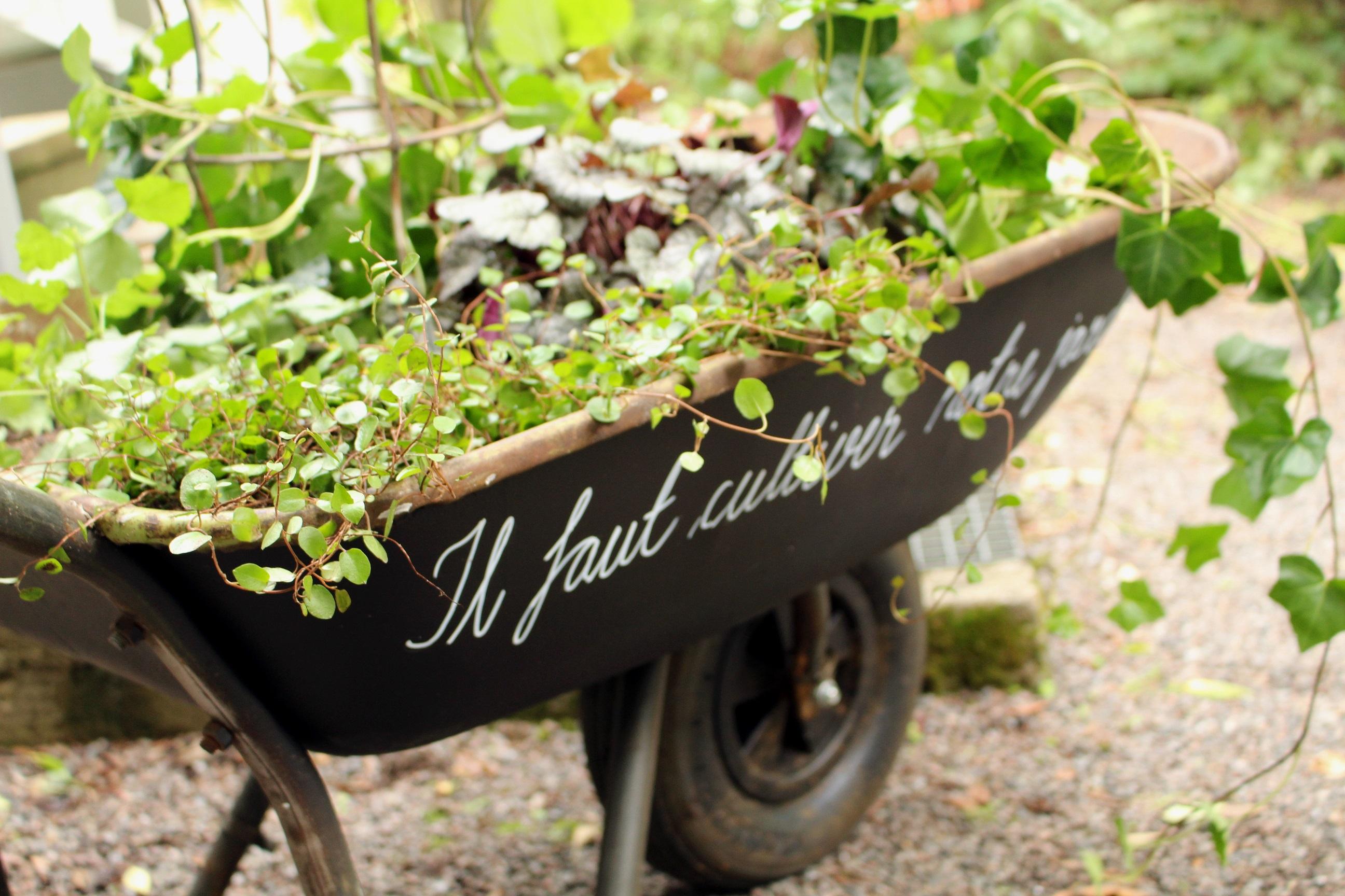 Il faut cultiver notre jardin