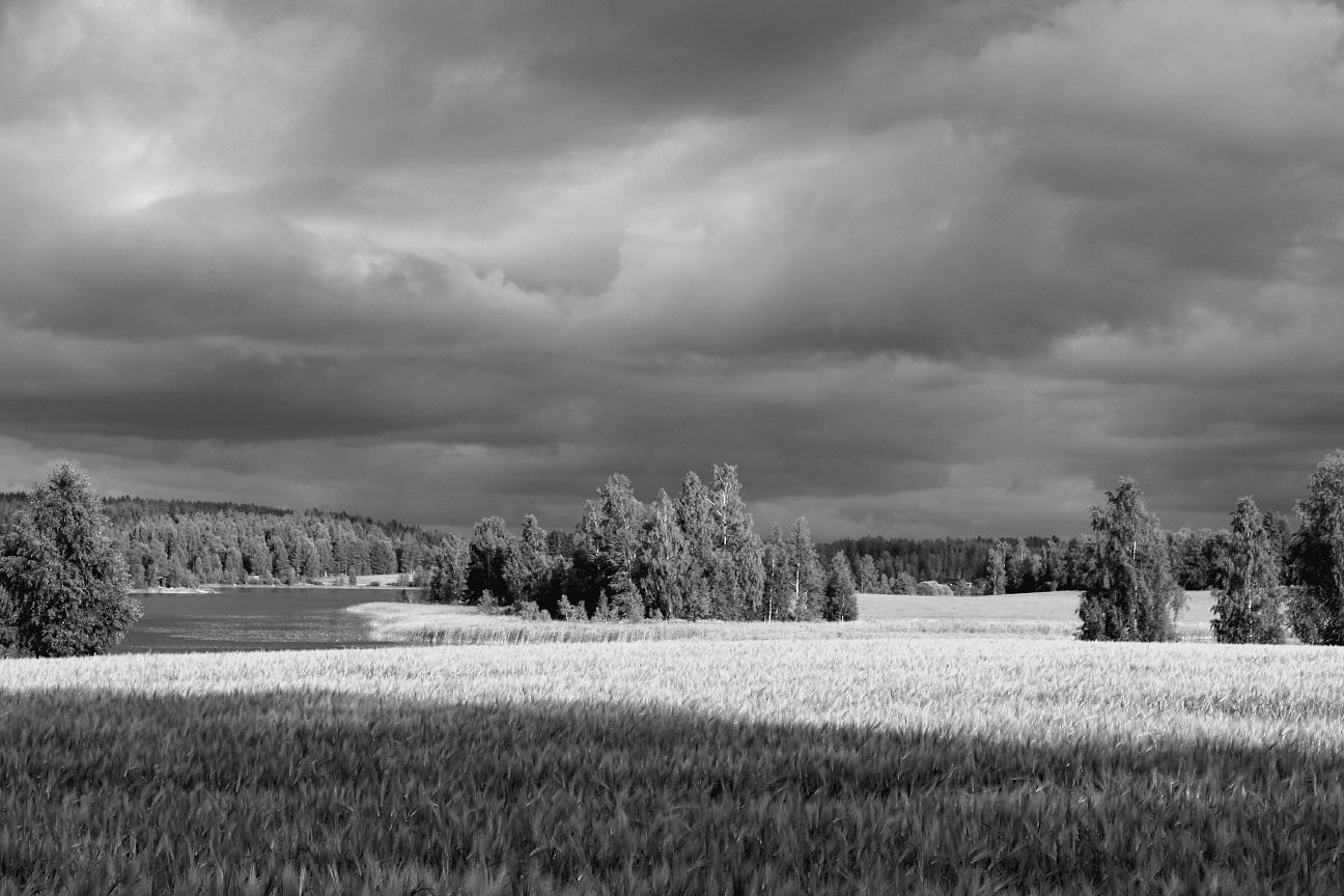 8 Maisema Pohjois-Savo